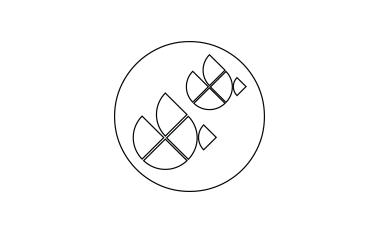 Transact icon