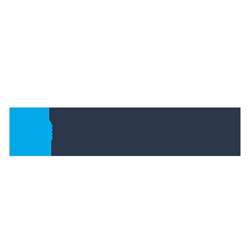 DeepSurface Logo